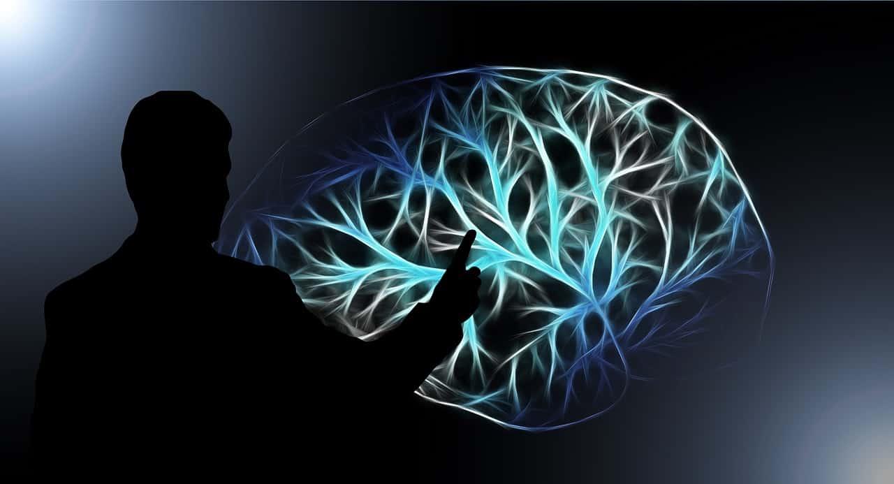 מוח ואיש מצביע